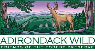 The Adirondacker's Partner's Page